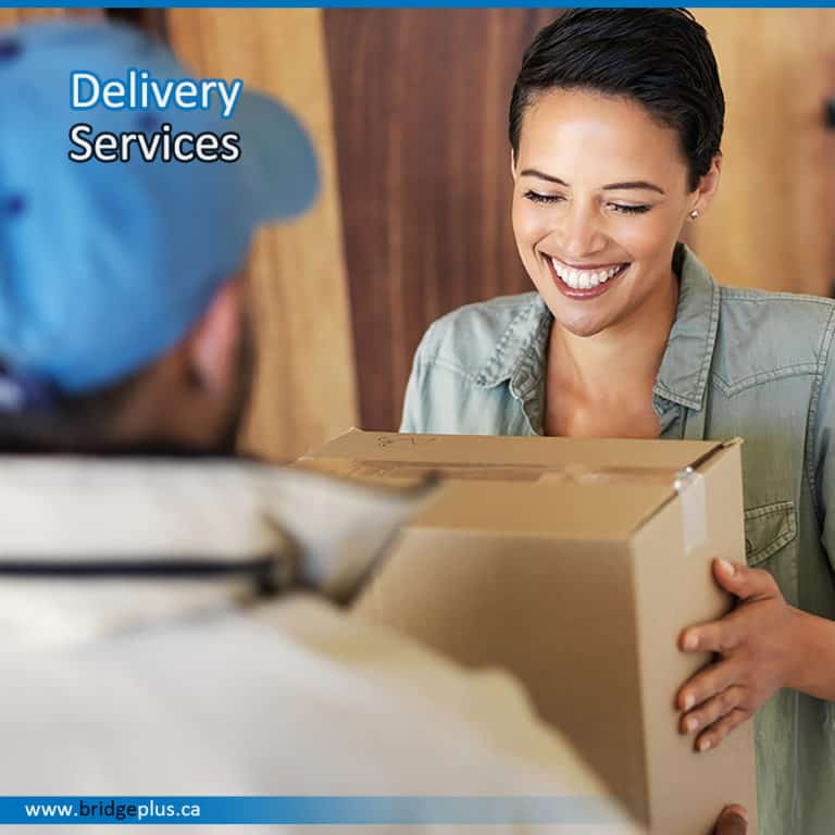 Delivery Team Services