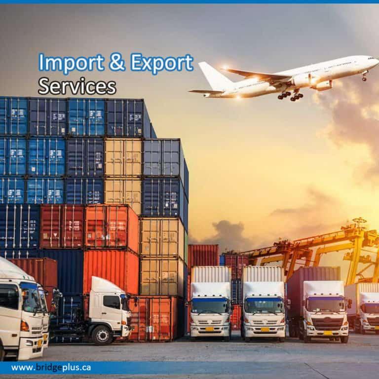 Import Export Work